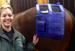 FAR infrared heat therapy shows heat pad on a horse's hindquarters