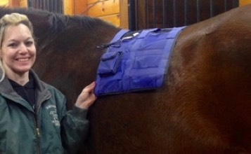 FAR infrared heat therapy shows heat pad on a horse's back